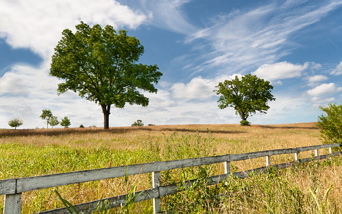 travel trees summer usa field start fence photography virginia us unitedstates perspective line solstice va pastoral begins 2012 astronomic summersky methodologically
