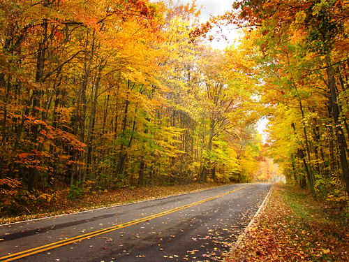 autumn ohio fall ashtabulacounty genevastatepark picmonkey