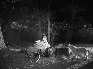 We Are Ready To Do Some More Midnight MUSHing | by woofdriver