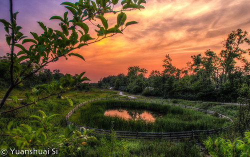 park city sunset summer urban lake west nature forest lens landscape photography pond angle pentax si cleveland wide da smc limit 日落 hdr k5 公園 beachwood 湖 攝影 傍晚 夏季 綠地 广角 綠化 15mmf4 大帥 賓得 yuanshuai pentaxart 西側 dashuai 森林之城 司遠帥 克利夫蘭