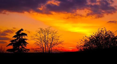 sunset england orange sun tree clouds prime countryside kent nikon d5000 35f18 blinkagain bestofblinkwinners