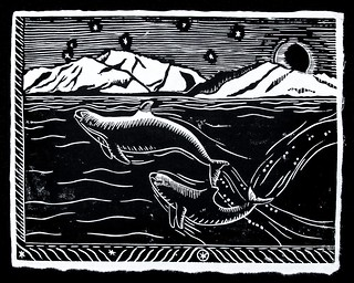Vaquita block print | by NOAA Fisheries West Coast