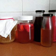 Water Kefir: Strange brew, kill what's inside of you...