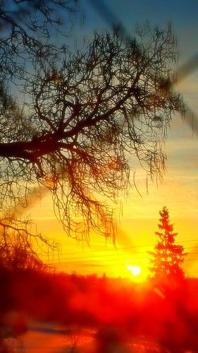 morning tree sunshine clouds sunrise vermont branches