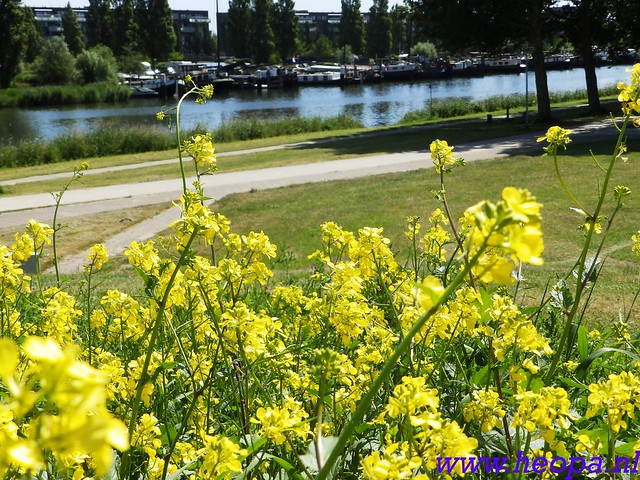 2016-06-09          Almeerdaagse         3e dag 25 Km   (44)