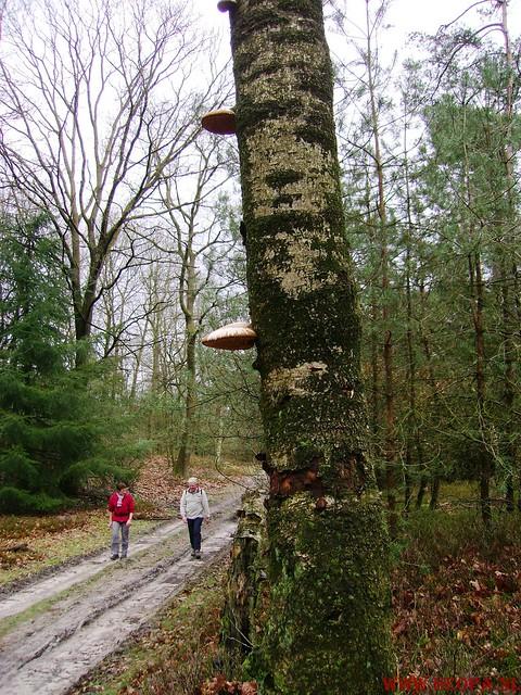 Ugchelen  22-03-2008. 30 Km JPG (33)