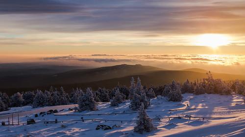 berg brocken harz morgen morgennebel schnee snow sonnenaufgang sunrise tannen wernigerode sachsenanhalt germany