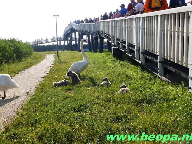 2016-06-16 2e dag Plus Wandel 4 Daagse Almaar 26 Km (19)