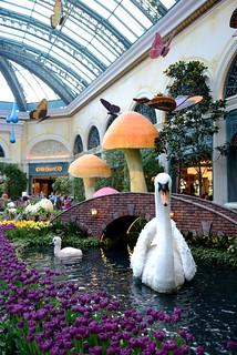 Botanical garden in the Bellagio | by daaot
