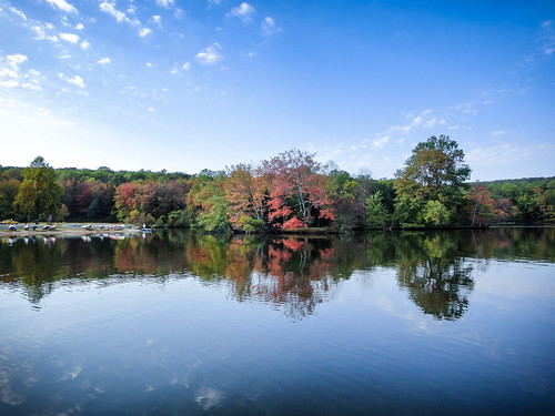park lake fall water forest landscape still state pennsylvania