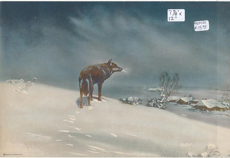 RD3430 Morris R. Bendien N.Y. - Lone Wolf By Victor Kowalski