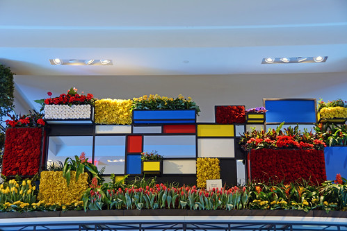 Picture Taken At Macy's 2015 Flower Show At Their Flagship Store In Herald Square On 34th Street In New York City. The 2015 Flower Show Is From Sunday March 22, 2015 To Saturday April 4, 2015. Photo Taken Monday March 23, 2015