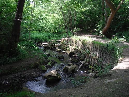 Porter Brook SWC Walk 266 - Sheffield to Bamford (via Burbage Rocks and Stanage Edge) or to Moscar Lodge