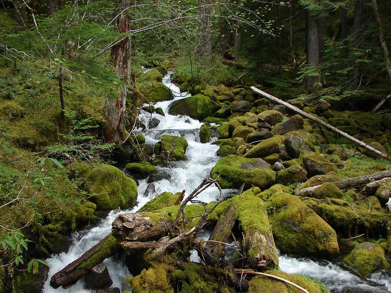 Roaring Creek