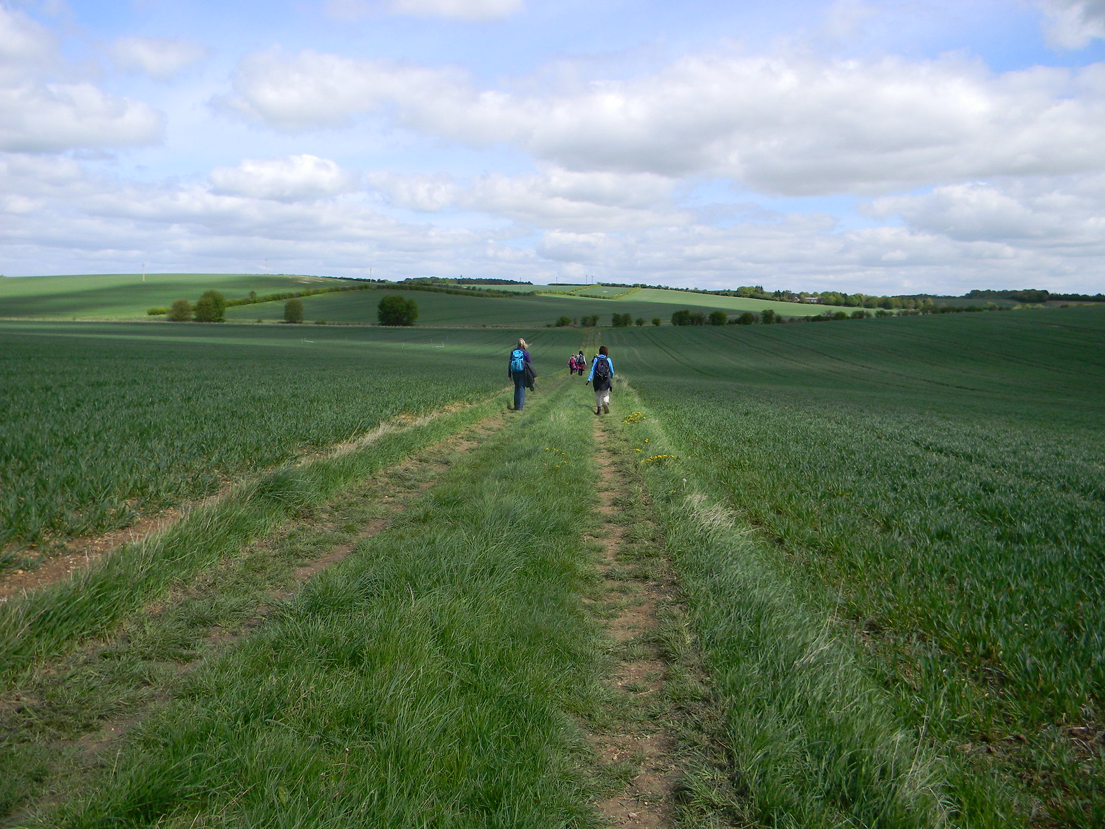 Across a big field Baldock Circular
