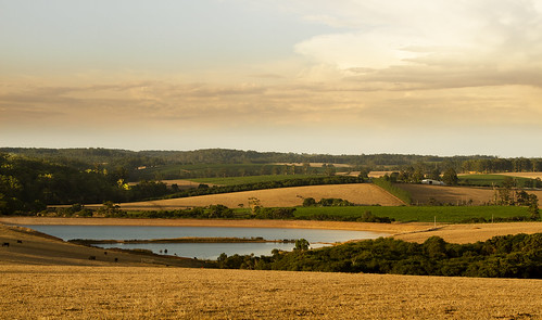 sunset landscapes farming crops contrasts paddock pembertonlandscapesseasons