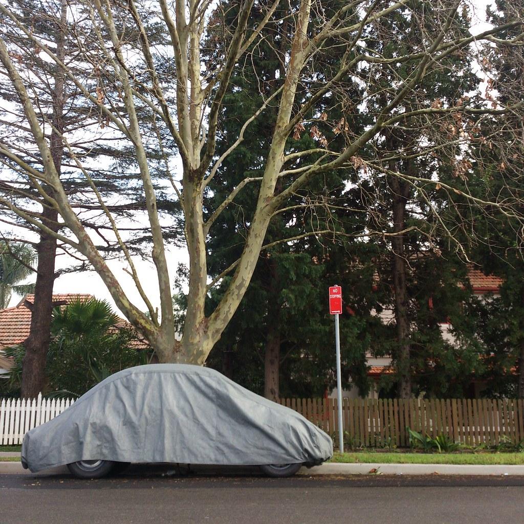 Snug as a............Longueville, NSW.