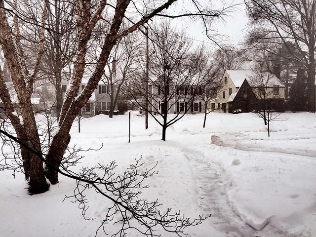 So much snow.