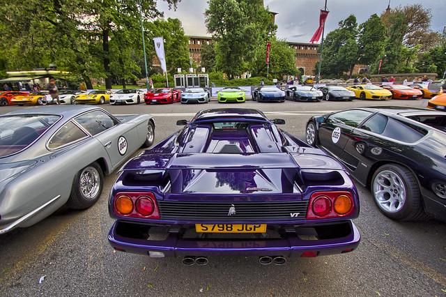 purple diablo and line up
