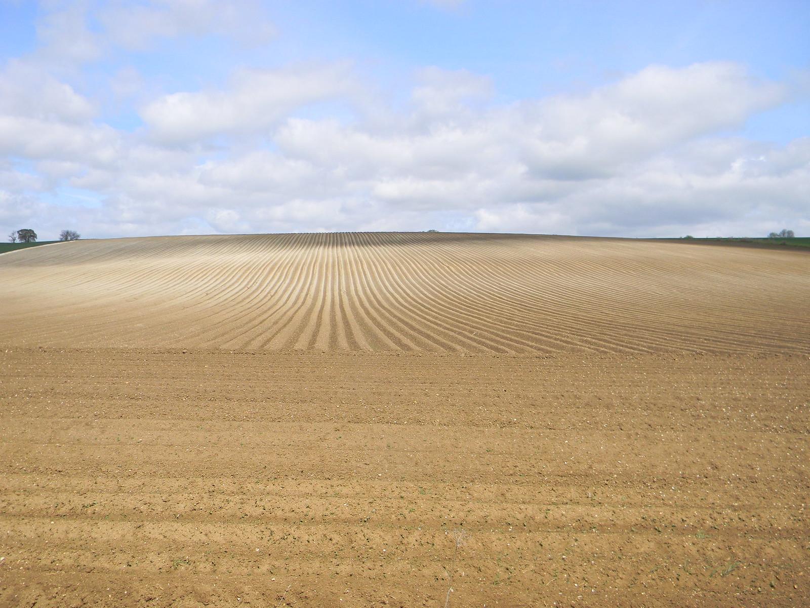 Ploughed field Baldock Circular