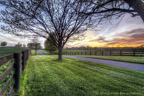 sunset usa tree clouds fence virginia shenandoah longbranch tomlussier landscapespec2013