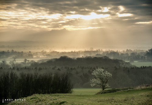 trees england sunlight mist clouds sunrise landscape haze blossom unitedkingdom sony sunrays wallingford wittenhamclumps southoxfordshire a99 sonyalpha andyhough slta99v andyhoughphotography