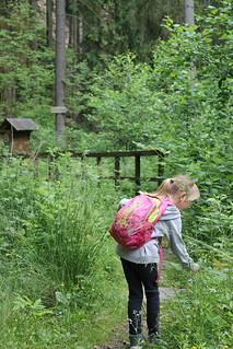 Along the Čertova rokle trail, Dřevčice