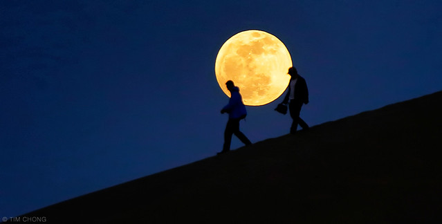 Tourists and the Moon