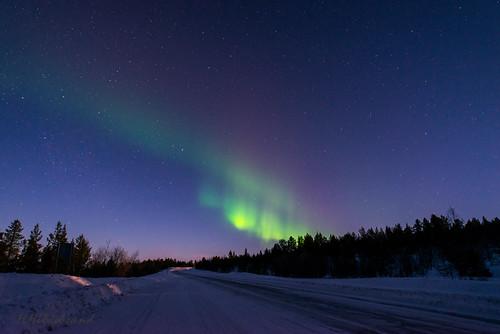 winter light snow color colour nikon allen forrest sweden outdoor hiking schweden lappland von x arctic fotos aurora sverige northern borealis d800 oder nordlys laponia nordlicht anzeigen ihnen norrbottenslän