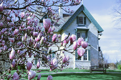 Norman Rockwell Museum- Linwood Building at Spring