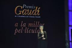 gala VII Premis Gaudí (68)