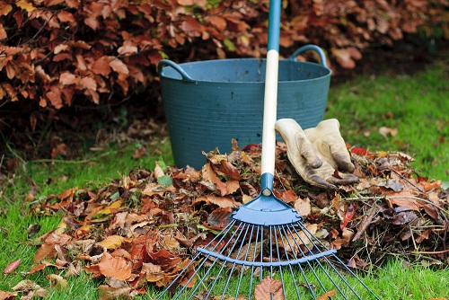 Éljen a kerttakarítási szolgáltatásunk lehetőségével.