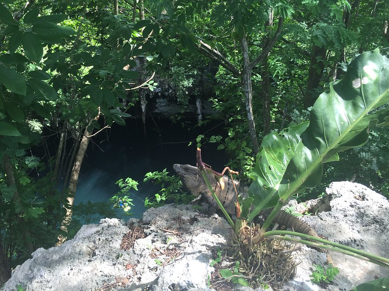 Cenote Chihuan