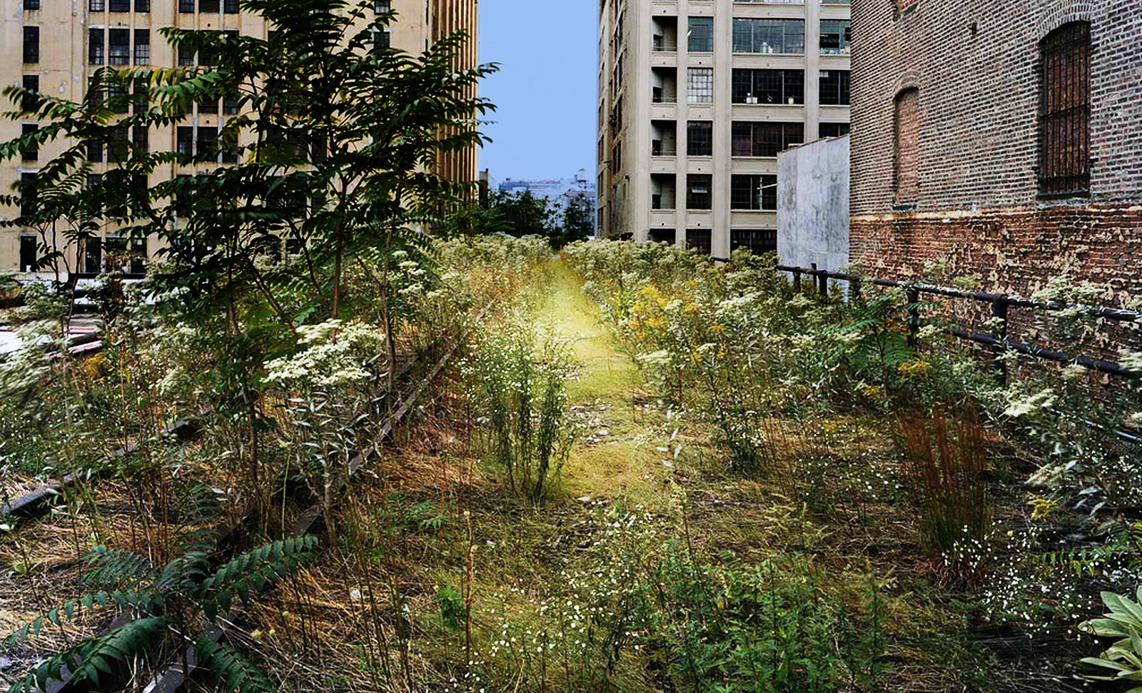 High Line NY Resemantización