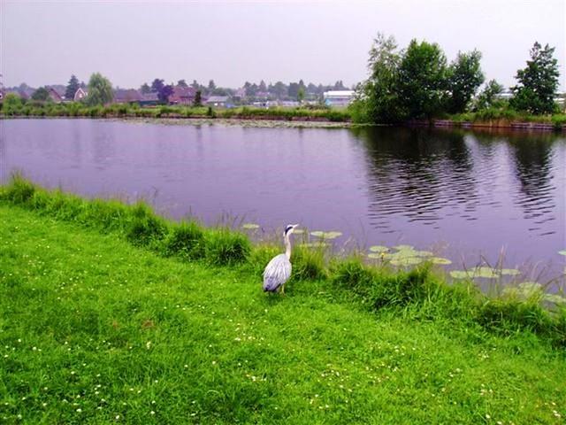 Oud Zuilen 20070609   40 km (38)
