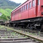 13 Viajefilos en Sri Lanka. Tren a Ella 26