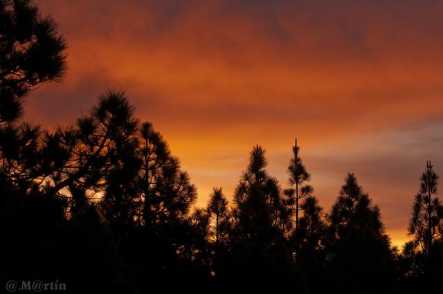 Fuego al amanecer de Transvulcania