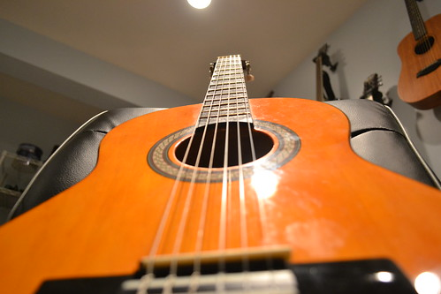 Bottom view - Bohlen-Pierce guitar with permanent frets. | by Mo Kaiwen 莫楷文