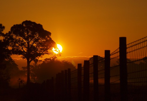sun night sunrise fence florida stuart halpatiokeeregionalpark pwpartlycloudy