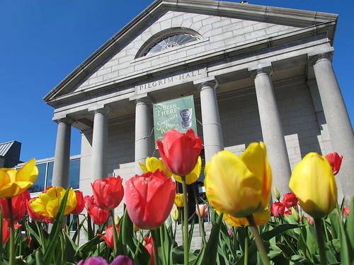 museum tulips massachusetts plymouth museums pilgrimhallmuseum