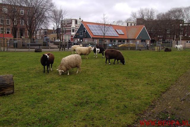 2011-01-08   rs'80       Scheveningen        25 Km  (66)