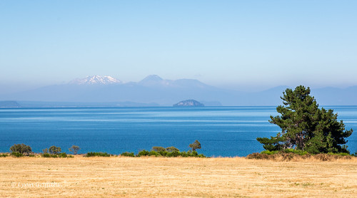 newzealand lake water landscape volcano waikato taupo landscapephotography outdoorphotography