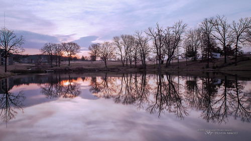 longexposure travel trees usa reflection texture clouds sunrise dawn unitedstates bare missouri fullframe branson stillness familytime 2015 canoneos6d holidayhillsresort thousandwordimages dustinabbott dustinabbottnet tamronsp2470mmf28vcusd haidaproiimcnd1864xfilter adobelightroom5 adobephotoshopcc alienskinexposure7