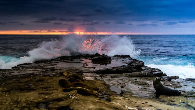 _DSC8556-3 Sunset La Jolla Cove