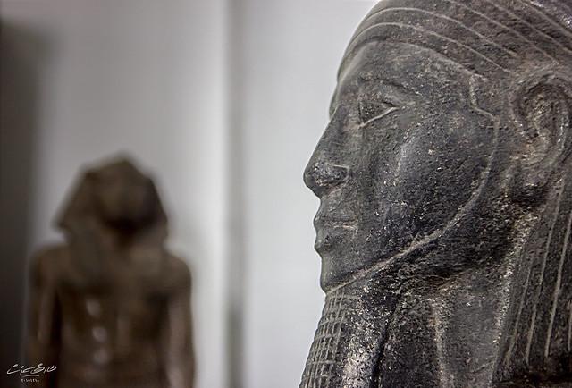 المتحف المصري #15