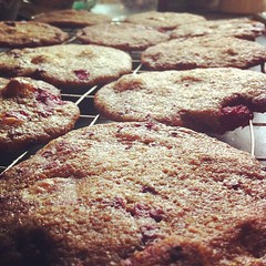 #whitechocolate #raspberry #cookie #cookies #instabake #instafood #igdaily #igaddict #hkig #ukig #food #foodgasm #foodporn #foodpics #foodgraphy #yummy #hot #love #cute #tasty #delicious #getinmybelly #munchies