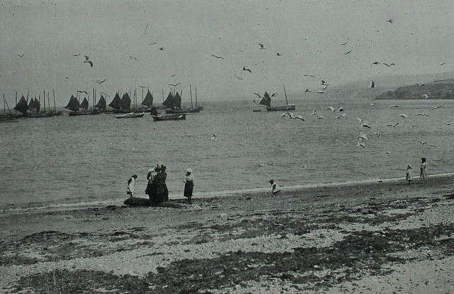 Peel, Isle of Man, 1905 - Bay with gulls and fishing boats