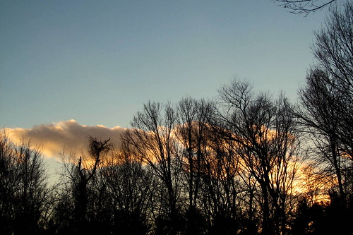 sunset evening putnamcounty treesilhouettes orangeclouds carmelny winter2015