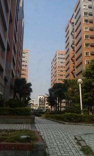 IMAG1240