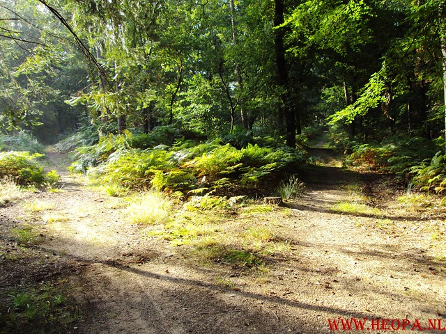 22-08-2009    Ede 20 Km (11)